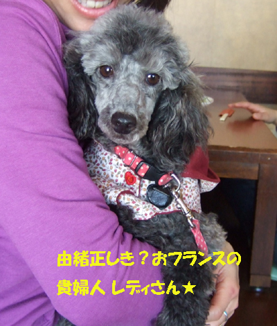 2010_02200010.jpg