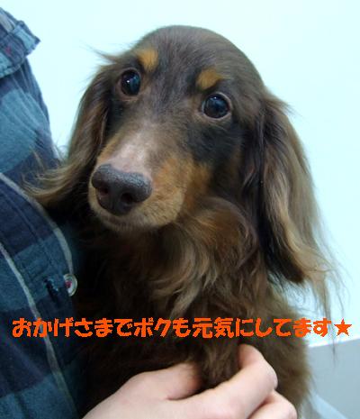2010_02250018.jpg