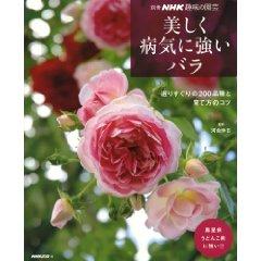 つる薔薇ジャスミーナの植え付けと花芽が沢山のクリロー達 ...