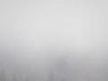 あっという間の五里霧中