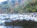 鮭の泳ぐ川と青葉山