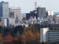 三居沢展望台付近から見る街