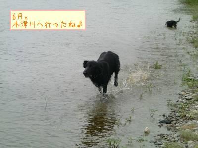 CIMG1752_20091229235701.jpg