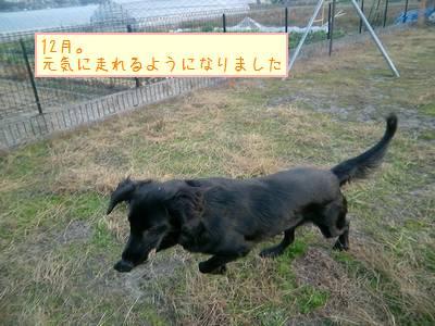 CIMG5885_20091230002014.jpg