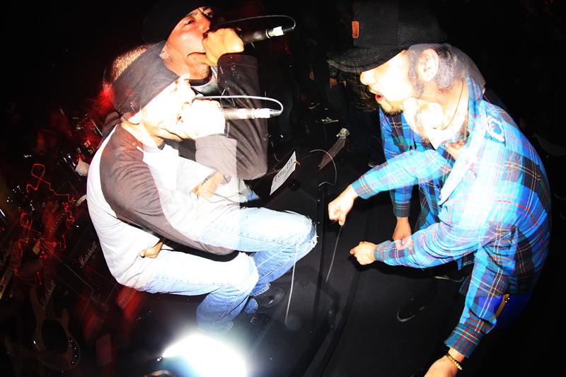 rockout5011.jpg