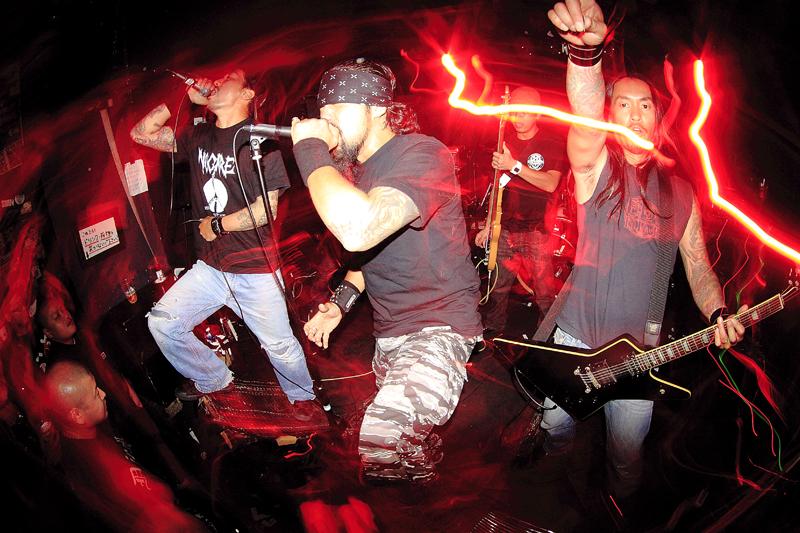 rockout7041.jpg