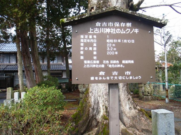 上古川 9