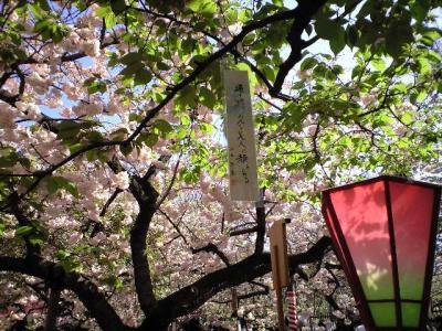 zouheikyoku12.jpg
