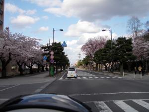 20110429_towada.jpg