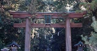 miwa_gate100102.jpg