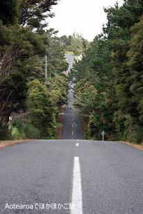 road100124.jpg