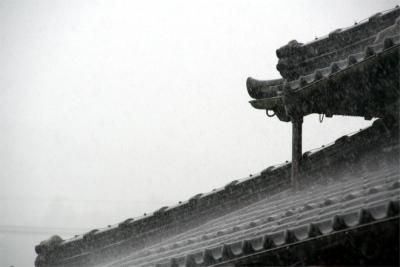 2011621.jpg