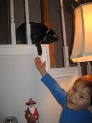 cat0912.jpg
