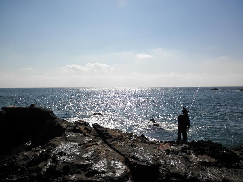 20130210江見漁港5
