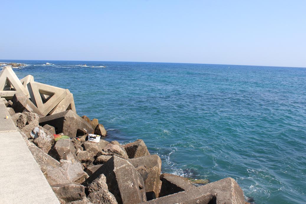 和田港釣り座