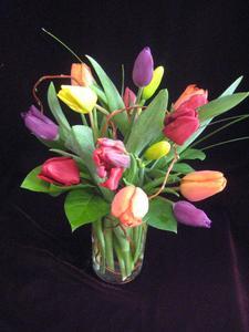 tulipfields.jpg