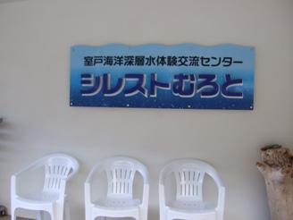 シレスト②