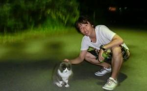 猫と戯れたい