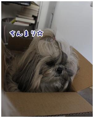 2011-04-30-01.jpg