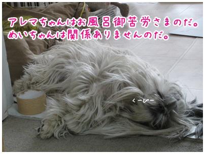 2011-05-04-01.jpg
