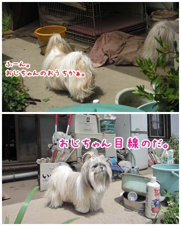 2011-05-14-02.jpg