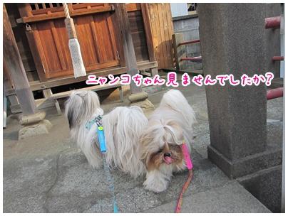2011-05-22-02.jpg