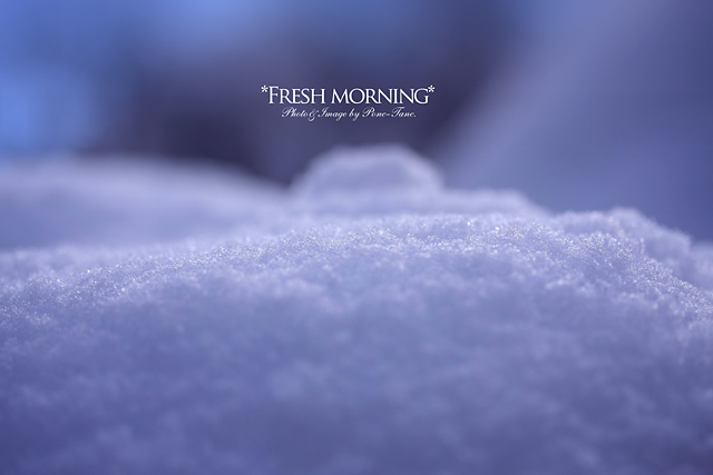 fresh morning 02
