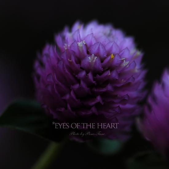 eyes 01