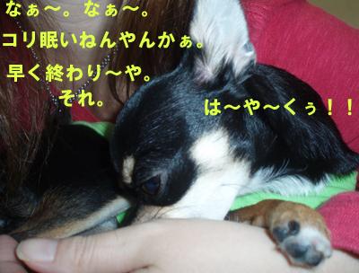 2010_0105_140320-P1050017.jpg