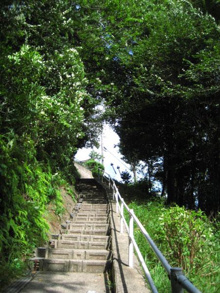 階段を振り返る また通ることがあるだろうか