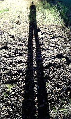 影の長さが秋ですね