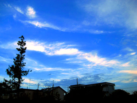 20100810sora3.jpg