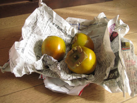 柿も入ってた これは本家の庭でとれたやつ