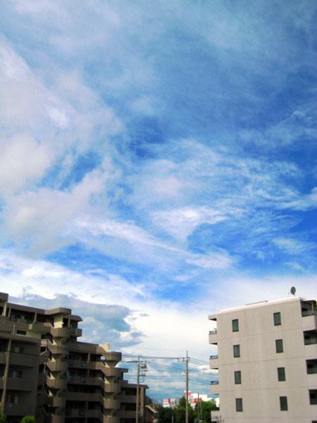 今日もまた 良い雲具合でした