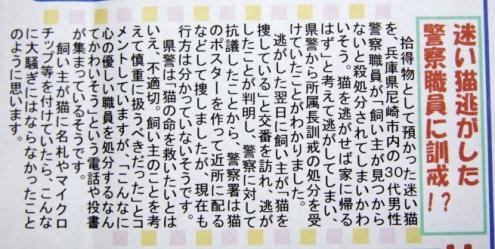 コピー ~ IMG_4848