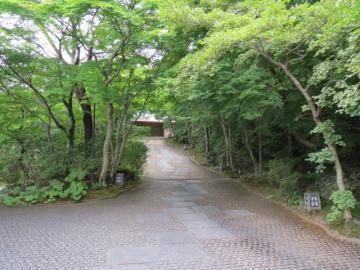 この坂を上り、旅館を後にします