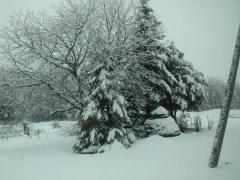 snow_0429.jpg