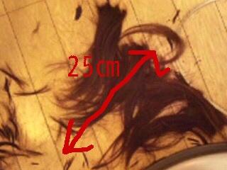 ashuna 214