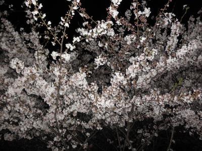 ashuna+274_convert_20100411120239.jpg