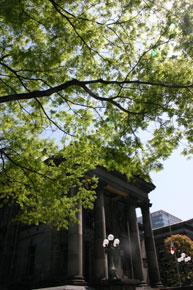 2011-4-26r.jpg