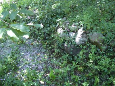 雪割桜の浸水1