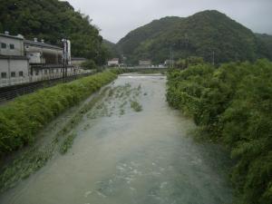 増水した桜川