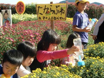 1104菊花園水やり