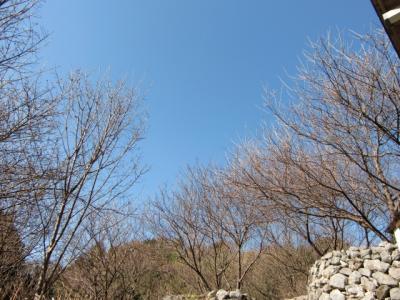 青空0221