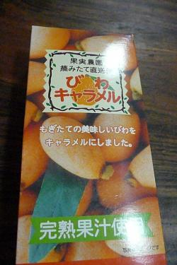 P1030382_convert_20100514233127.jpg