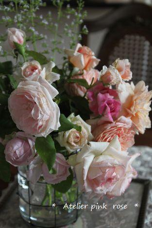 7.31今朝の薔薇