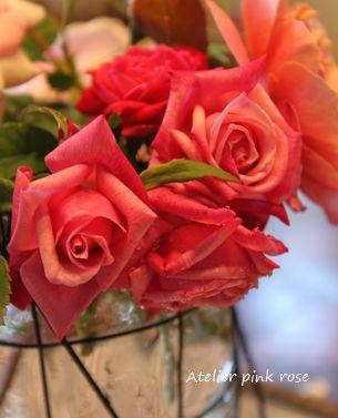 9.3今日の薔薇