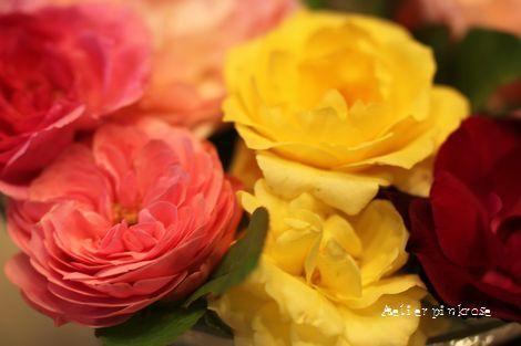 9.13今日の薔薇