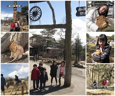 cats2_20120326214141.jpg