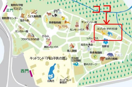 animal_map.jpg